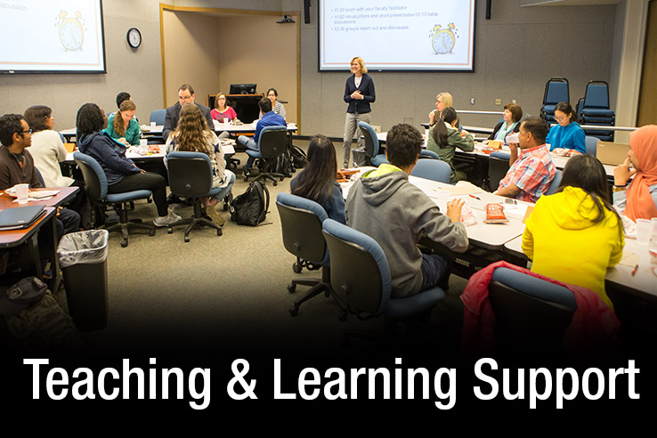 Teaching_and_Learning_Support